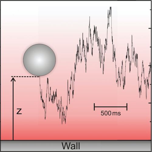 Influence of Noise on Force Measurements published in Phys. Rev. Lett.