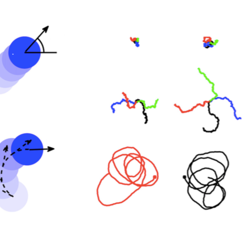 Simulation of Active Brownian Motion published in Am. J. Phys.