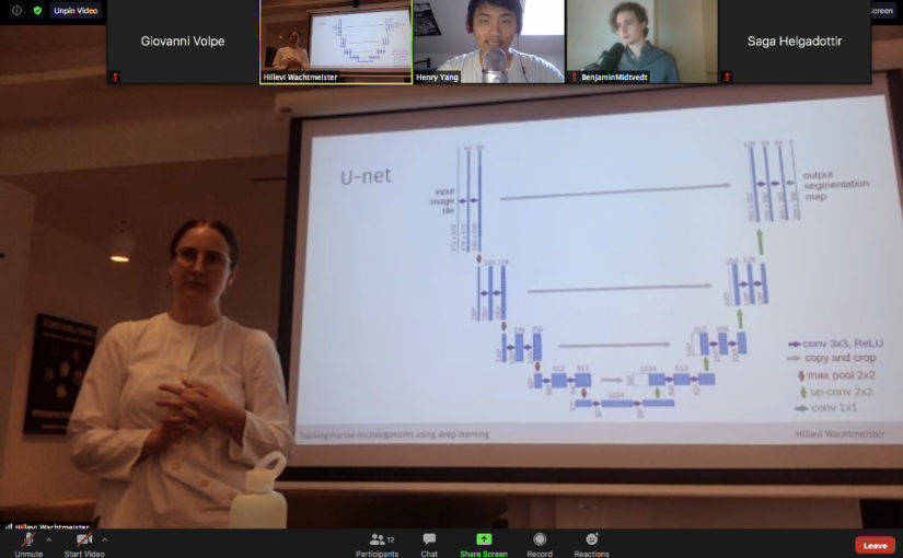 Hillevi Wachtmeister defended her Master Thesis on June 11, 2020. Congrats!